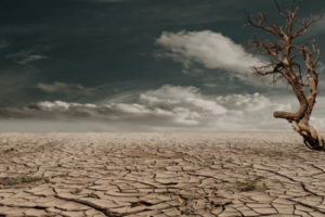 климат, засуха
