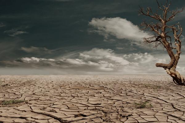 Климатический апокалипсис. Что нам грозит?