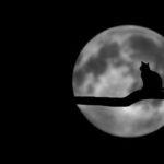 Лунное затмение в июле 2019. Что нельзя делать, а что можно