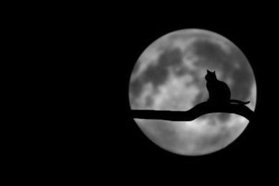 лунное затмение в июле 2019
