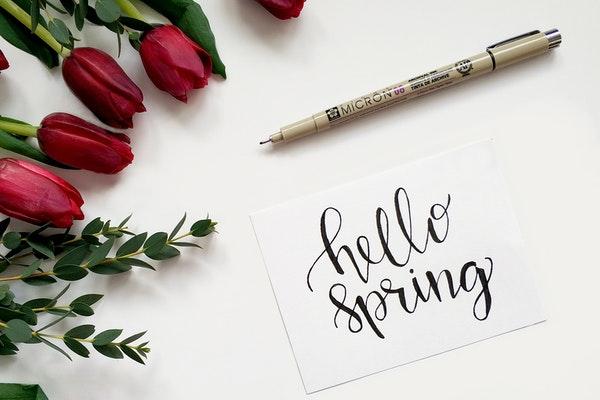 Что нужно успеть сделать весной